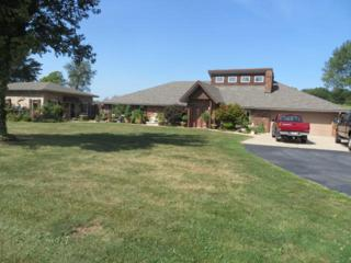 596  Crabtree  , Ozark, MO 65721 (MLS #60007761) :: Good Life Realty of Missouri