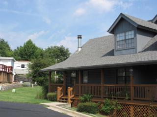 3  Cabin Court  1, Branson, MO 65616 (MLS #60009267) :: Good Life Realty of Missouri