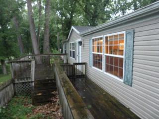 Rt 71  Box 1764 C  , Wheatland, MO 65779 (MLS #60009745) :: Good Life Realty of Missouri