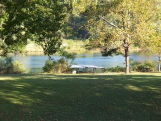 1250  Beeler Road  , Branson, MO 65616 (MLS #60010920) :: Good Life Realty of Missouri