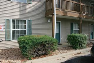 680-1  Fall Creek Drive  1, Branson, MO 65616 (MLS #60012331) :: Good Life Realty of Missouri