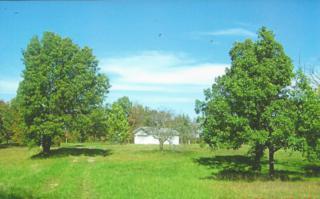 245  Driftwood Lane  , Sparta, MO 65753 (MLS #60012454) :: Good Life Realty of Missouri