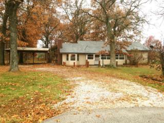 3224 W Farm Road 44  44, Willard, MO 65781 (MLS #60013739) :: Good Life Realty of Missouri