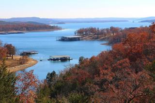 2026  Indian Point Road  , Branson, MO 65616 (MLS #60013853) :: Good Life Realty of Missouri