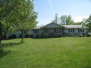 222  Birch Drive  , Ozark, MO 65721 (MLS #60019338) :: Good Life Realty of Missouri