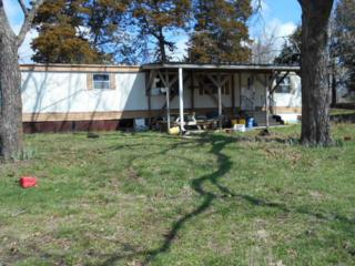 Cr175 SE Cr 175  , Collins, MO 64738 (MLS #60021508) :: Good Life Realty of Missouri
