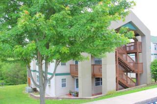 19  Goldfinch Road  1, Branson, MO 65616 (MLS #60026509) :: Good Life Realty of Missouri