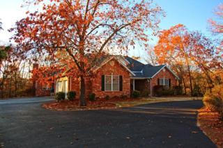 256  Meadow Lane  , Branson, MO 65616 (MLS #60013619) :: Good Life Realty of Missouri