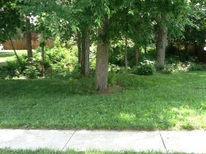 2980 W Nottingham Street  , Springfield, MO 65810 (MLS #60017279) :: Good Life Realty of Missouri