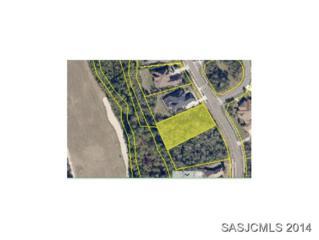 372  Sophia Terrace  , St. Augustine, FL 32095 (MLS #151793) :: Florida Homes Realty & Mortgage