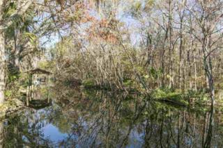 136  Boca Raton  , Satsuma, FL 32189 (MLS #153583) :: Florida Homes Realty & Mortgage