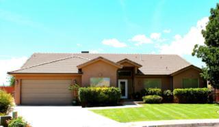 3650  Rim View Cir  , Santa Clara, UT 84765 (MLS #14-159795) :: Heidi Skinner & Associates