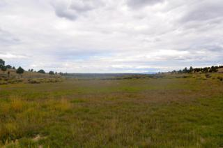 Paunsaugunt Cliffs  45, Hatch, UT 84735 (MLS #14-161043) :: Heidi Skinner & Associates