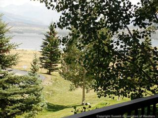 1127  9000 DIVIDE RD  207, Frisco, CO 80443 (MLS #S389595) :: Century 21, The Smits Team
