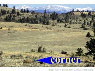 850  Kinkehee Rd  , Hartsel, CO 80449 (MLS #S389723) :: Century 21, The Smits Team