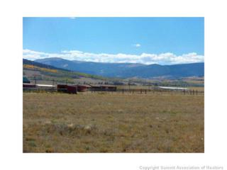 0  Lakeview Rd  , Fairplay, CO 80440 (MLS #S390157) :: Century 21, The Smits Team