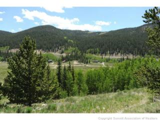1843  River Dr  , Alma, CO 80420 (MLS #S390782) :: Century 21, The Smits Team