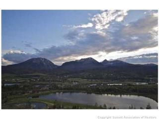 264  Stonefly Dr  , Silverthorne, CO 80498 (MLS #S391928) :: Century 21, The Smits Team