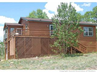 856  Sheep Ridge Rd  , Fairplay, CO 80440 (MLS #S389266) :: Century 21, The Smits Team