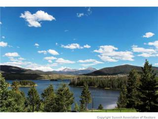 1610  Lakeview Ter  102, Frisco, CO 80443 (MLS #S389600) :: Century 21, The Smits Team