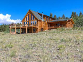 793  Foxtail Dr  , Fairplay, CO 80440 (MLS #S391933) :: Century 21, The Smits Team
