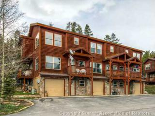 107  Monarch Dr  4, Breckenridge, CO 80424 (MLS #S391905) :: Century 21, The Smits Team