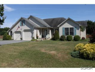 16801  Randor Dr  0, Milton, DE 19968 (MLS #615065) :: The Don Williams Real Estate Experts