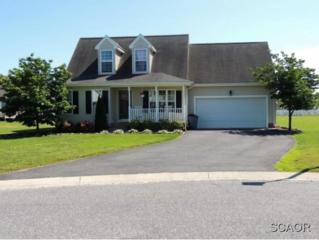 29889  Brighton Ct  0, Delmar (Wicomico), DE 21875 (MLS #615462) :: The Don Williams Real Estate Experts