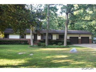 907  Poplar Street  0, Milford, DE 19963 (MLS #616755) :: The Don Williams Real Estate Experts