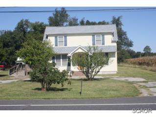 6868  Shawnee Rd  0, Milford, DE 19963 (MLS #616920) :: The Don Williams Real Estate Experts