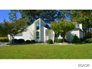 34129 N Heron Dr  0, Lewes, DE 19958 (MLS #617475) :: The Don Williams Real Estate Experts