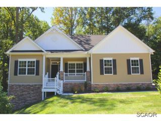 1  Bluewater Way  0, Lewes, DE 19958 (MLS #617492) :: The Don Williams Real Estate Experts