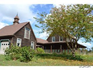 5282  Yuletide Ln  0, Milford, DE 19963 (MLS #617685) :: The Don Williams Real Estate Experts