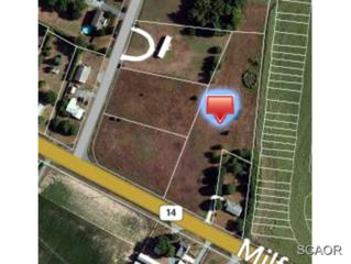 Milford Harrington Hwy  , Milford, DE 19963 (MLS #617780) :: The Don Williams Real Estate Experts