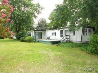 28376  Chippewa Ave  8041, Millsboro, DE 19966 (MLS #617801) :: The Don Williams Real Estate Experts