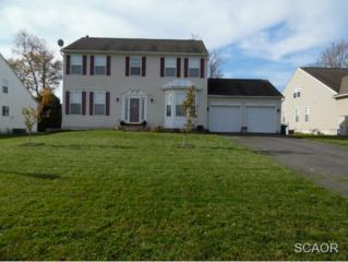 19 S W. Bullrush Drive  0, Milford, DE 19963 (MLS #617973) :: The Don Williams Real Estate Experts