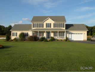 7027  Clark Rd  0, Seaford, DE 19973 (MLS #618057) :: The Don Williams Real Estate Experts