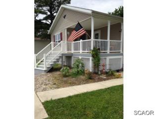 35527  Pine Drive  52129, Millsboro, DE 19966 (MLS #618171) :: The Don Williams Real Estate Experts