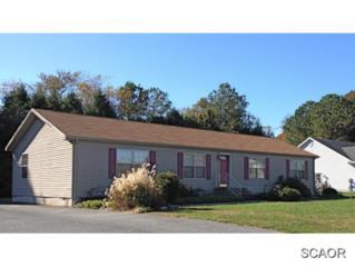 30106  Mill Run  0, Milton, DE 19968 (MLS #618275) :: The Don Williams Real Estate Experts