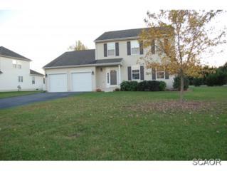 7  W Bullrush  0, Milford, DE 19963 (MLS #618389) :: The Don Williams Real Estate Experts