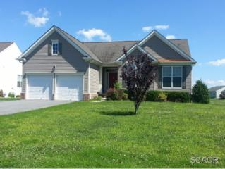 50  Meadow Lark Dr  0, Milford, DE 19963 (MLS #618413) :: The Don Williams Real Estate Experts