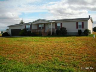 32267  Autumn Court  0, Dagsboro, DE 19939 (MLS #618747) :: The Don Williams Real Estate Experts