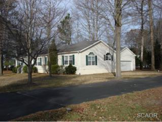 2  Cochise Trl  0, Millsboro, DE 19966 (MLS #618826) :: The Don Williams Real Estate Experts