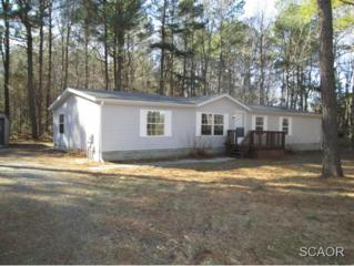 241  Pritchett Rd  0, Milford, DE 19963 (MLS #619619) :: The Don Williams Real Estate Experts