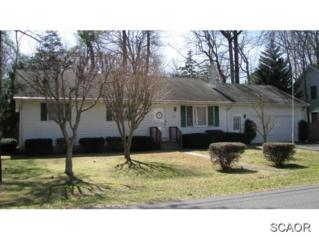 33246  Woodland Way  0, Lewes, DE 19958 (MLS #621221) :: The Don Williams Real Estate Experts