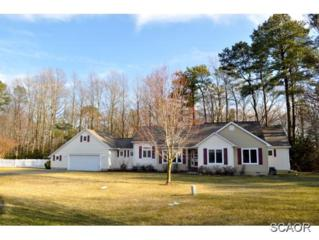 33  Gosling Dr  0, Lewes, DE 19958 (MLS #621394) :: The Don Williams Real Estate Experts