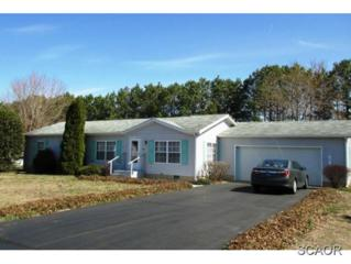118 E Holly Dr  0, Lincoln, DE 19960 (MLS #621844) :: The Don Williams Real Estate Experts