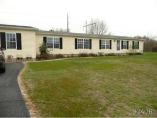 224  W..Holly Drive  0, Lincoln, DE 19960 (MLS #622201) :: The Don Williams Real Estate Experts
