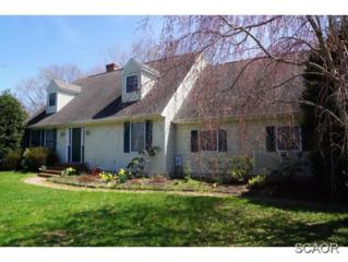 30358  Mill Run  0, Milton, DE 19968 (MLS #622238) :: The Don Williams Real Estate Experts
