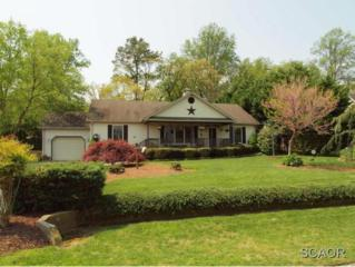 29960 W Mill Run  0, Milton, DE 19968 (MLS #623085) :: The Don Williams Real Estate Experts